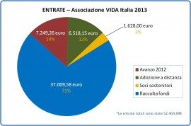 Entrate VIDA 2013